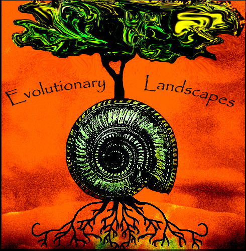 Evolutionary_landscapes_copy